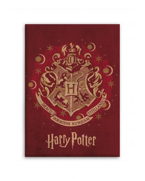 Harry Potter Warm Red & Gold Fleece Blanket