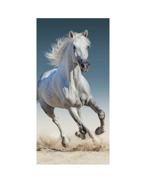 Horse Pony on the beach Grey White Stunning Animal Print towel Unusual design